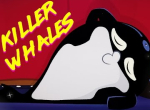 Killer Whales - They're The Bad Boys
